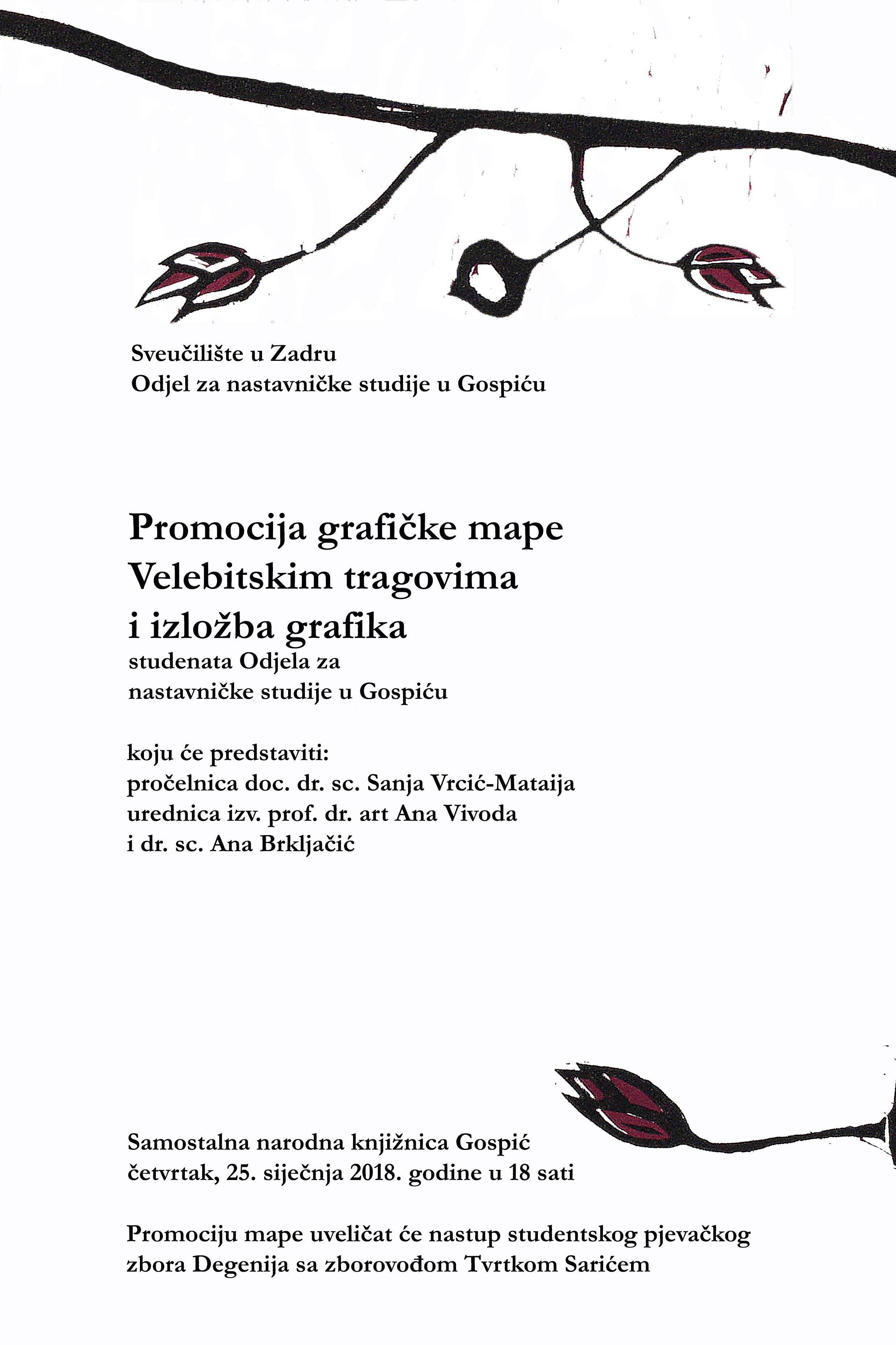 Noć muzeja u samostalnoj narodnoj knjižnici Gospić